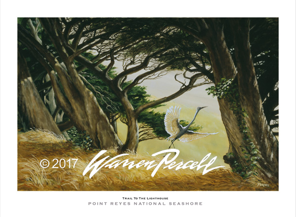 Trail To The Lighthouse Poster - Point Reyes Lighthouse - - Wine Country Posters & Art by Warren R. Percell Sr.